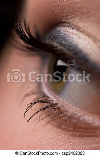 eye  - csp2402023