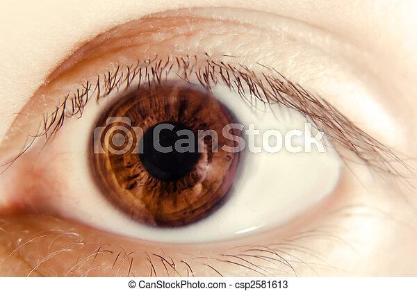 Eye - csp2581613