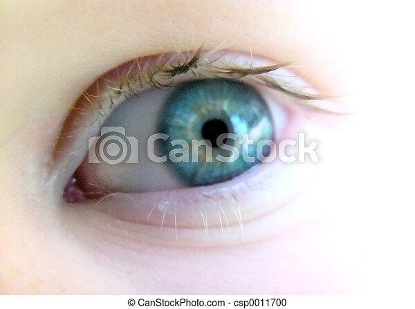 eye#2 - csp0011700