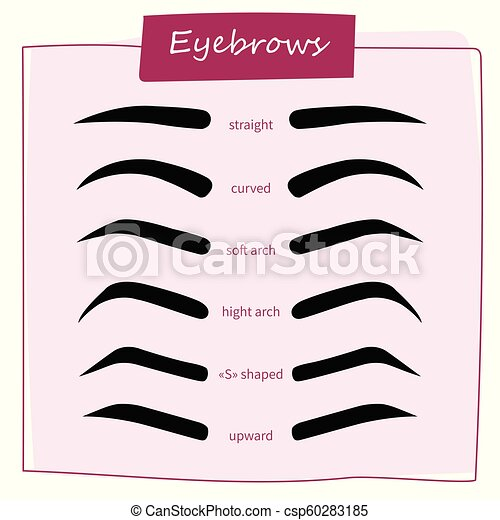 eyebrow shaping for woman face makeup eyebrows shape set vector