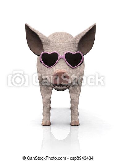 fárasztó, friss, kismalac, sunglasses. - csp8943434