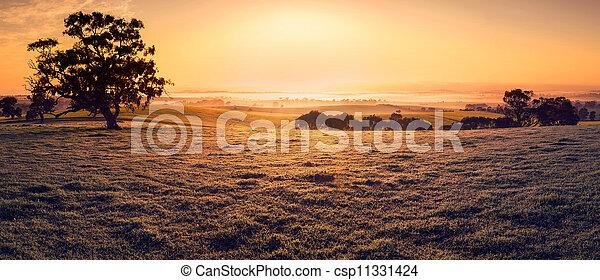 fält, drömmar - csp11331424
