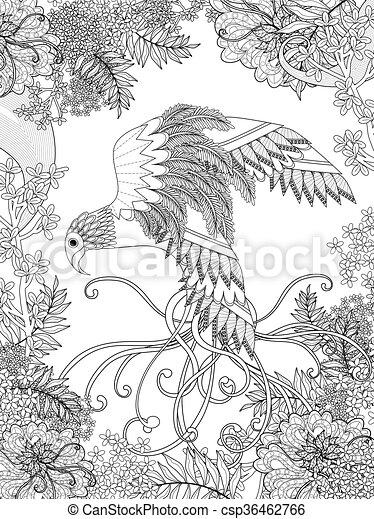 Färbung, vogel, seite. Färbung, vogel, elegant, elemente,... Clipart ...
