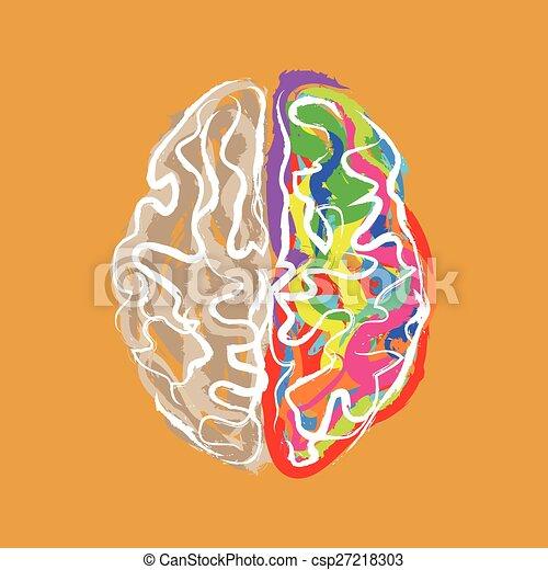 färg, hjärna, slaglängder, skapande - csp27218303