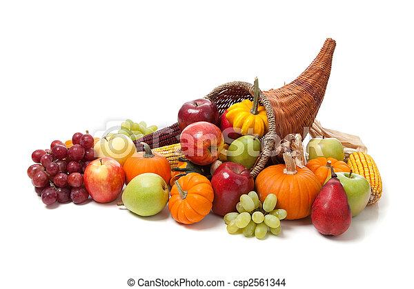 föld, fehér, ősz, bőségszaru - csp2561344