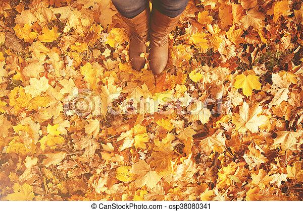 new styles 3c5f4 0f100 füße, gehen, schuhe, nature., leaves., stiefeln, herbst, begrifflich, beine