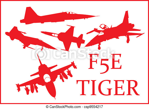 F5E fighter plane. - csp9554217