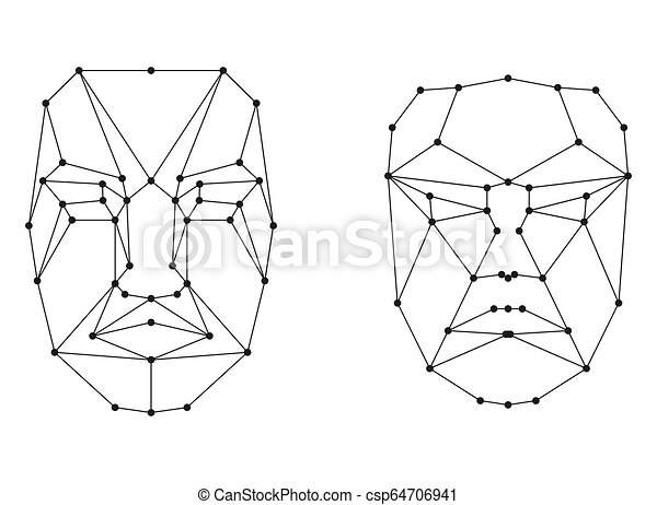 Facial Structure Vector Clipart Royalty Free 212 Facial Structure