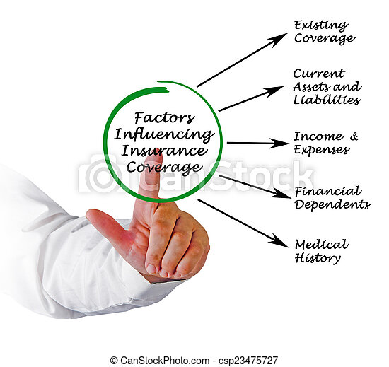Factors Influencing Insurance Coverage - csp23475727