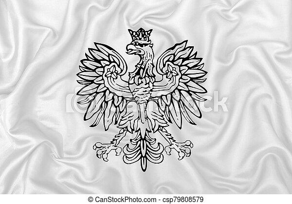 falcon heraldic design fabric texture - csp79808579