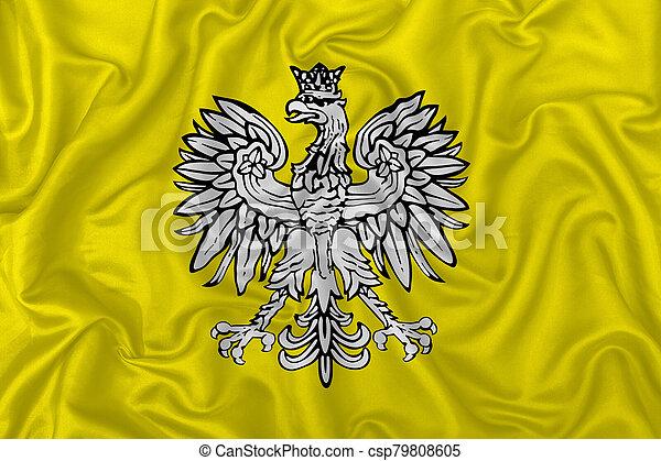 falcon heraldic design fabric texture - csp79808605