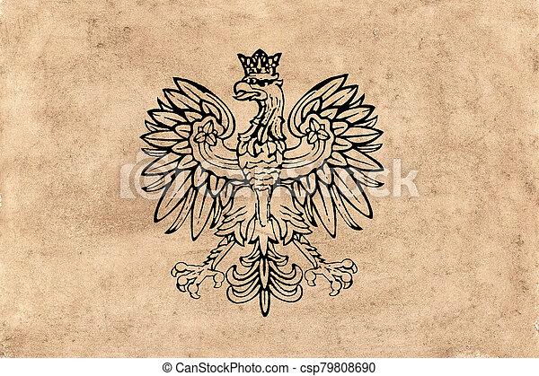 falcon heraldic design on old paper - csp79808690