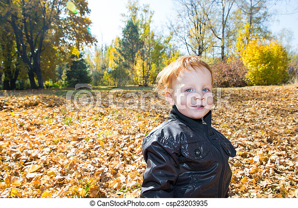 Fall. Adorable child boy with leaves in autumn park - csp23203935