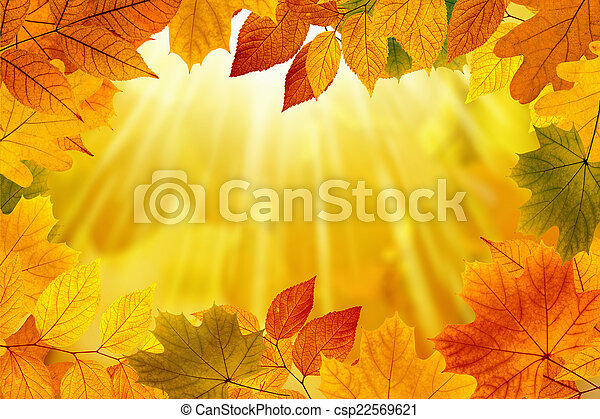 Fall background - csp22569621
