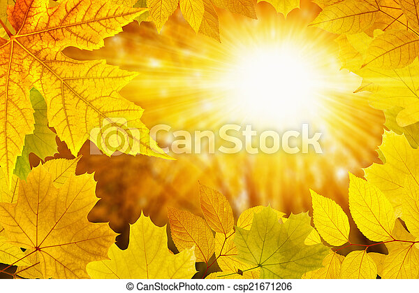 Fall background - csp21671206