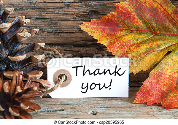 Fall Background with Thank You - csp20595965