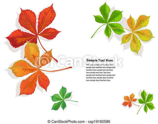 fall colorful chestnuts leaves - csp19160586