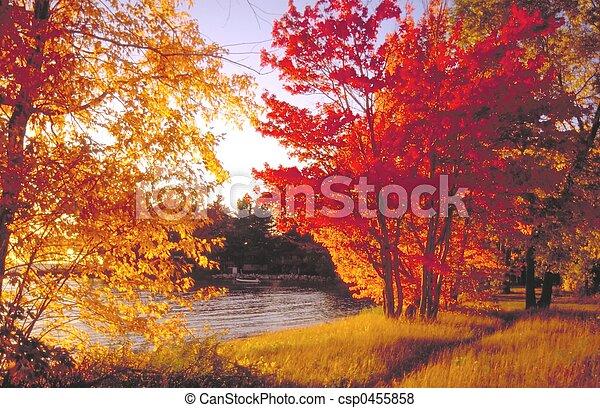 fall colours - csp0455858