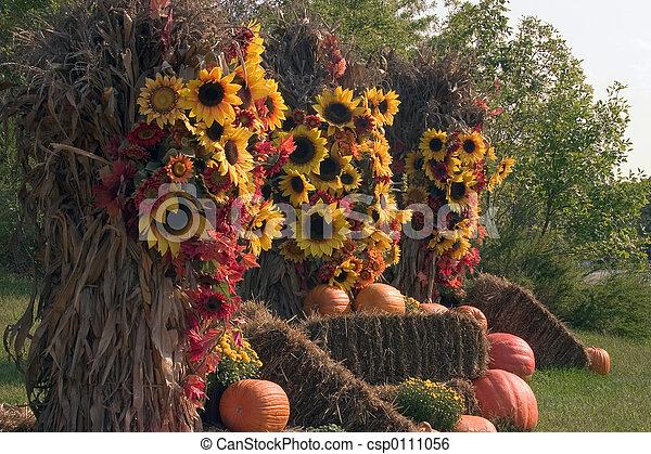 Fall decorations - csp0111056