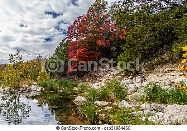 Fall Foliage on Frio River, Texas. - csp31984460