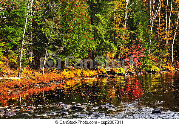 Fall forest and lake shore - csp2007311