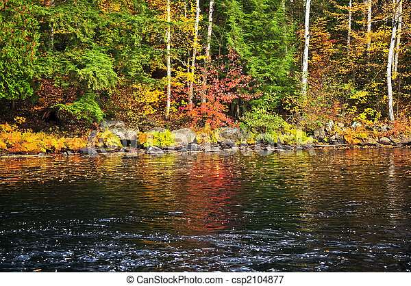 Fall forest and lake shore - csp2104877