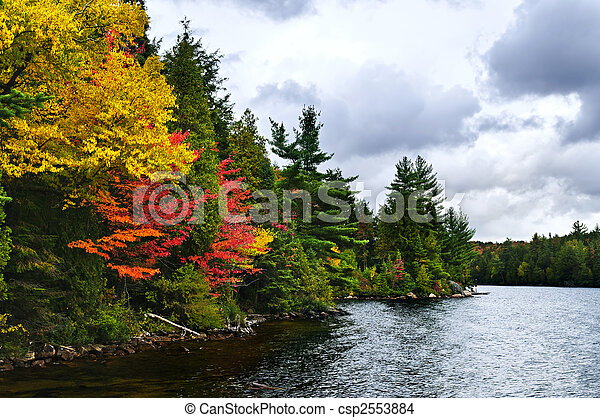 Fall forest and lake shore - csp2553884