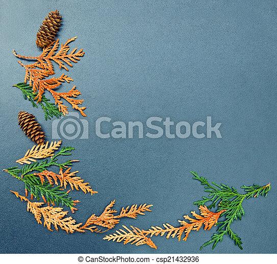 Fall frame, cones, cedar - csp21432936