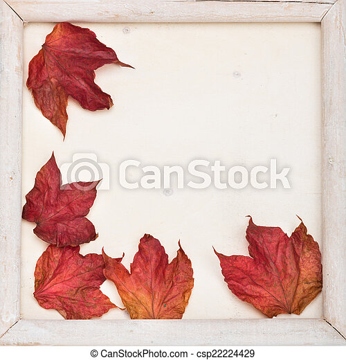 fall frame - csp22224429
