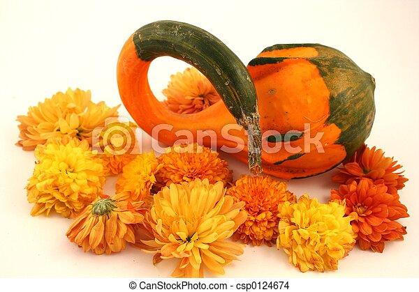 Fall Gourd - csp0124674