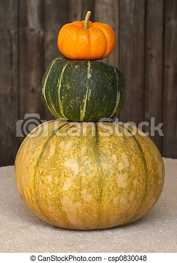 fall gourds stacked - csp0830048