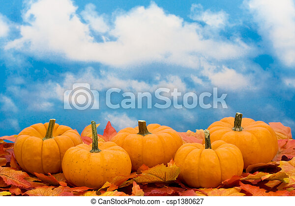 Fall Harvest  - csp1380627