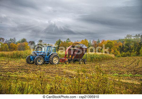 Fall harvest - csp21395910