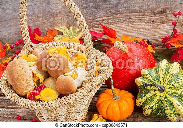 Fall harvest - csp30843571