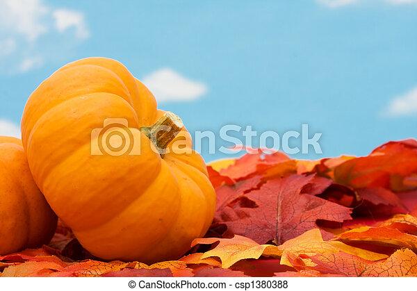 Fall Harvest  - csp1380388