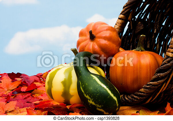Fall Harvest - csp1393828