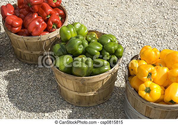 Fall harvest - csp0815815