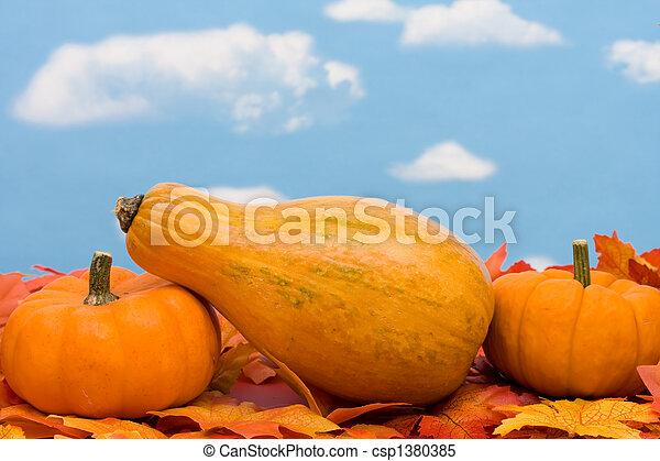 Fall Harvest  - csp1380385