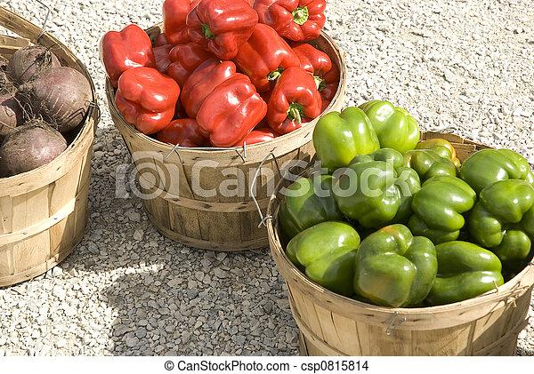 Fall Harvest - csp0815814