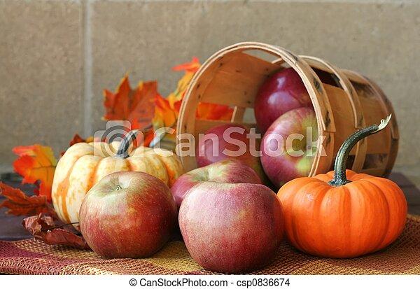 Fall Harvest - csp0836674