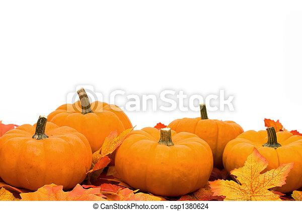 Fall Harvest  - csp1380624