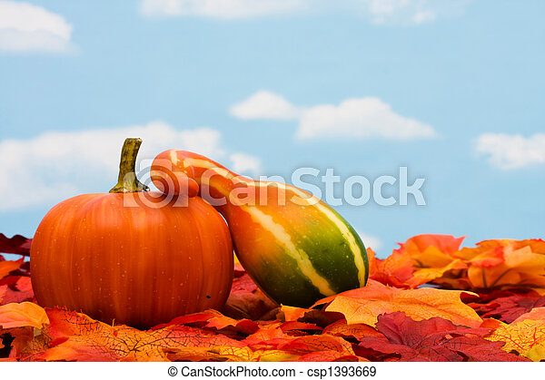 Fall Harvest - csp1393669