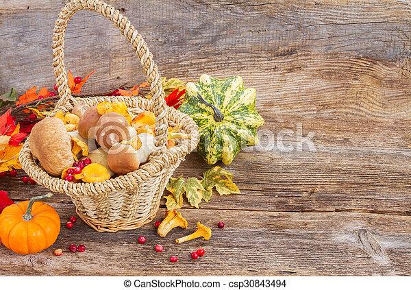 Fall harvest - csp30843494