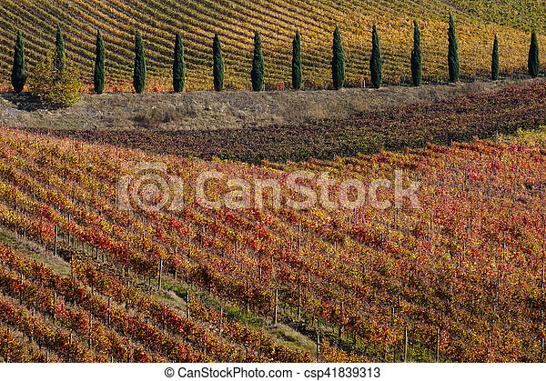 fall landscape - csp41839313