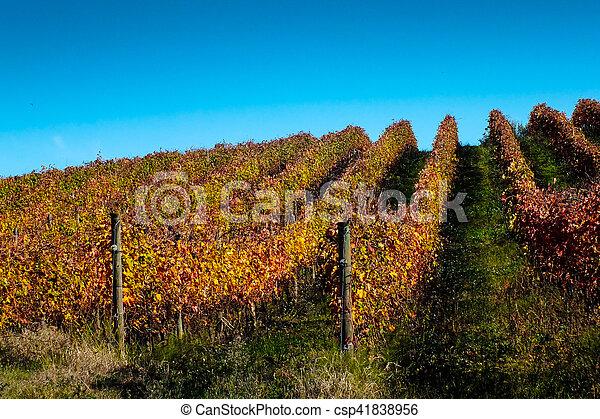 fall landscape - csp41838956