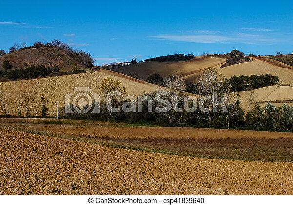 fall landscape - csp41839640