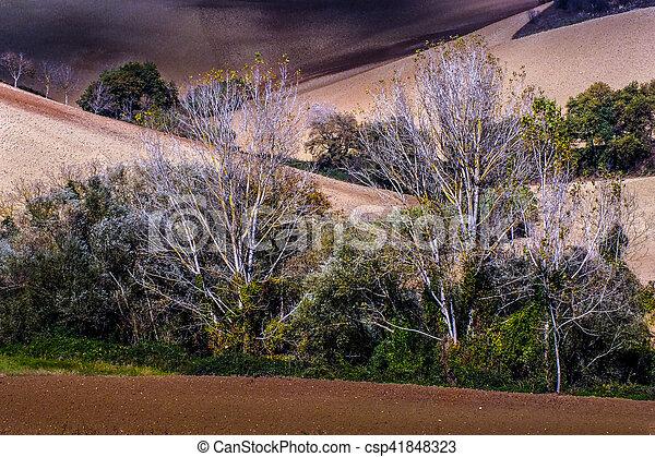 fall landscape - csp41848323