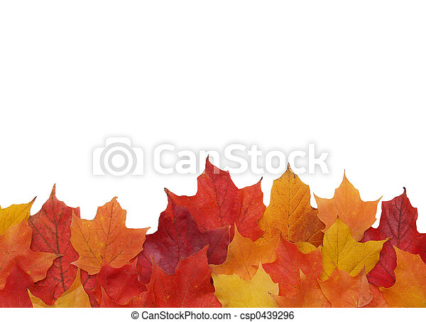 fall leaf border - csp0439296