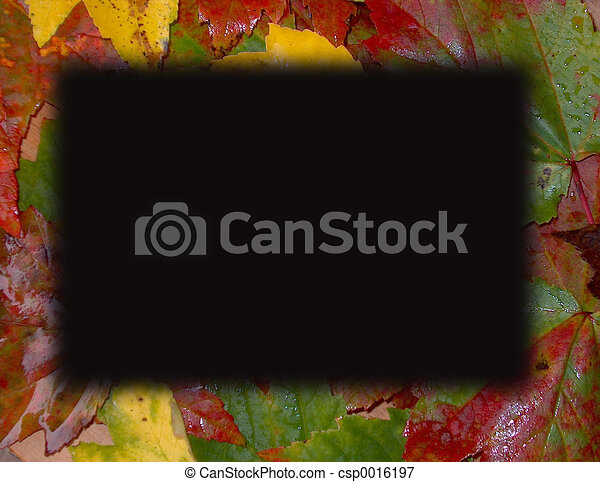 Fall Leaves Border - csp0016197