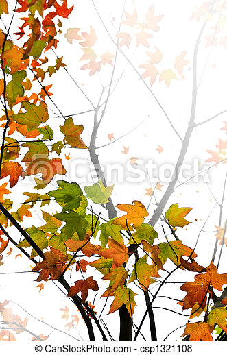 Fall maple leaves background - csp1321108